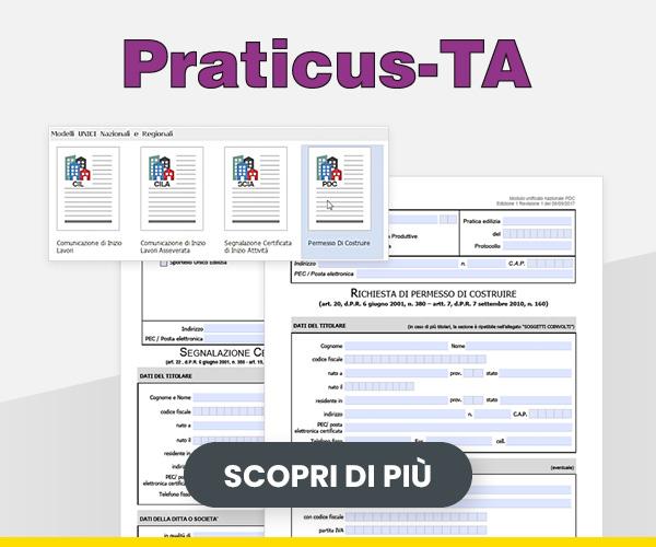 praticus-ta