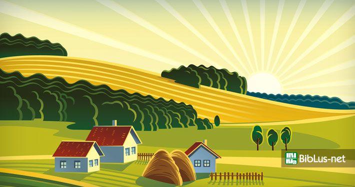 Accatastamento fabbricati rurali i chiarimenti dei - Accatastamento casa ...