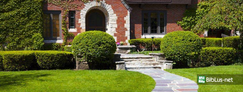 Bonus verde balconi, giardini e terrazze. Cos\'è e come funziona ...