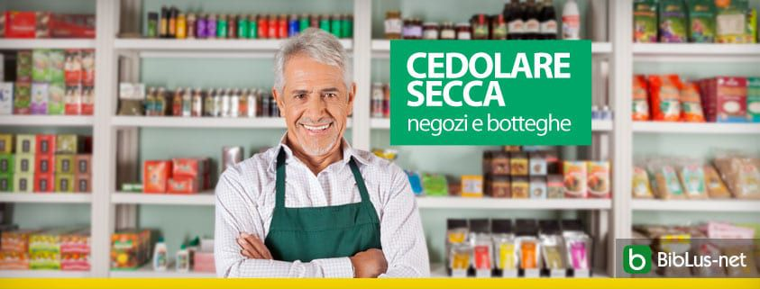 Cedolare Secca Dal 2019 Anche Su Immobili Locati A Fini Commerciali