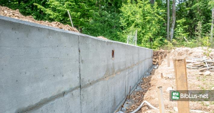 Preventivo Muro Cemento Armato.Scia O Permesso Di Costruire Per Un Muro Di Cinta