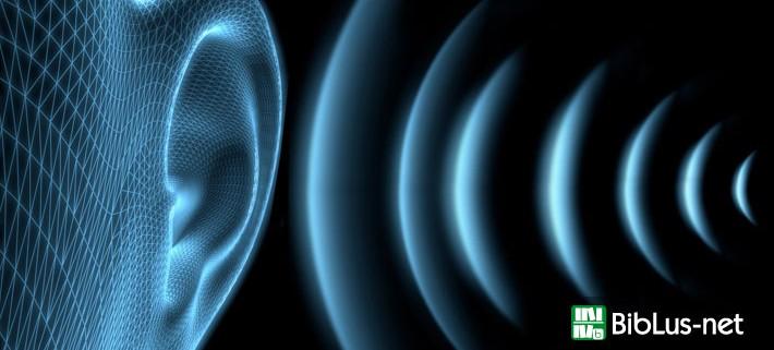 Rischio Rumore, da ACCA un nuovo software con banca dati per la valutazione dei rischi da esposizione al rumore secondo il Testo Unico della Sicurezza.