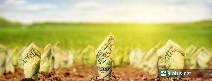 edificabilita-terreni-agricoli