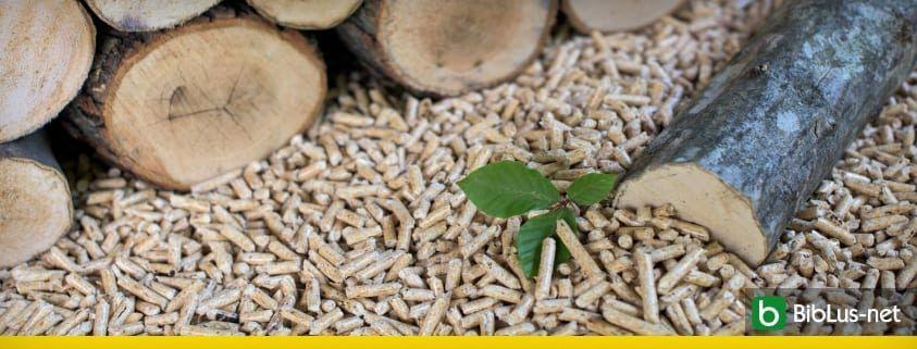 pellet e biomasse