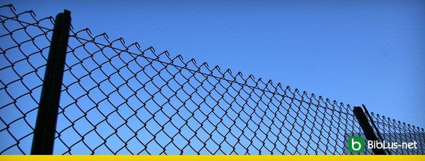 recinzione paletti in ferro sentenza tar
