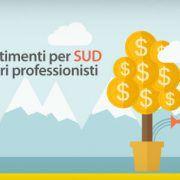 Investimenti-per-SUD-e-liberi-professionisti