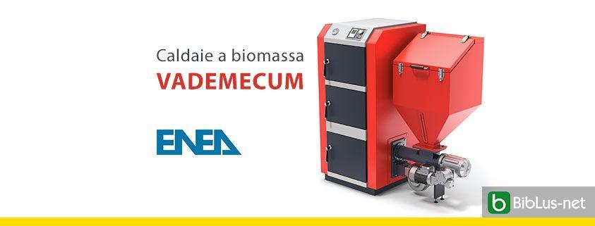 Caldaie-a-biomassa-vademecum