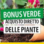 bonus-verde-acquisto-diretto-delle-piante