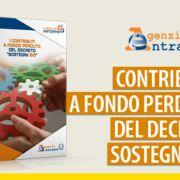 Contributo-fondo -perduto-decreto-Sostegni-bis