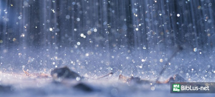 Recupero acqua piovana